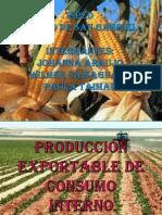 PRODUCCIÓN EXPORTABLE DE CONSUMO INTERNO