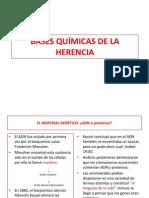 BASES QUÍMICAS DE LA HERENCIA