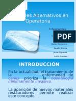 CAA 509 - Materiales Alternativos en Operatoria Dental FINAL