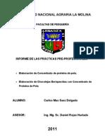 54179605 Informe de Practica Pre Profesionales Do