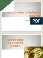 ECTOPARÁSITOS - Artrpodos de Inters Mdico (1)