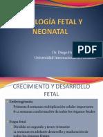 Fisiología Neonatal
