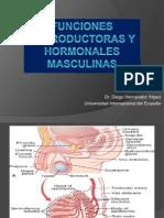 Funciones Reproductoras y Hormonales Masculinas