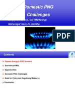 Domestic Fuel Retailing Challenges