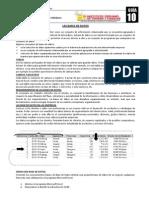 Guia 10 Excel 2010