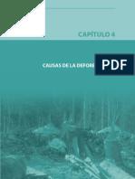 DEFORESTACION_Parte5