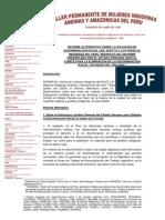 Informe alternativo sobre la situación de discriminación racial de los pueblos indígenas