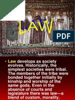 Law, Nurses Bill of Rights, Basic Human Right of Human Research Subj - Morillo, Mark Carlo - BSn4B