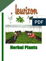 Herbal Plant Catalog Fleurizon