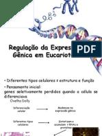 Regulação da Expressão Gênica em Eucariotos_2009