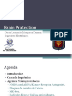 [8]Brain Protection.pptx