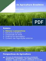 Os Caminhos da Agricultura Brasileira