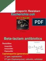 Cephalosporin resistance in E.coli