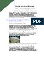 92668982-Tehnologia-fabricării-branzei-Telemea