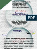 geneologia