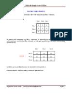 Matrices con PseInt