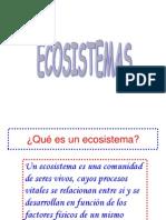 Ecosistemas Rebeca 1b