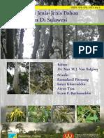 Buku Pengenalan Pohon Sulawesi
