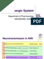 Adrenergic System - Drdhriti