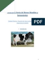 Tasacion de Vaca de CAbaña Holando Argentino