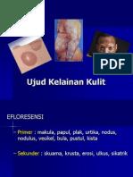 Ujud Kelainan Kulit - Nugrohoaji D., Dr., MKes., SpKK.