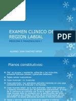 Examen Clinico de La Region Labial