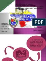 Exposicion de Ingles II