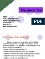 24646893-membran-sel