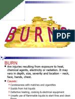 burns lec