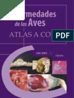 92635006 Atlas Enfermedades de Las Aves