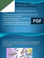 Archea Bacteria (Caracteristicas Generales)