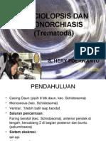 1. Fasciolopsis
