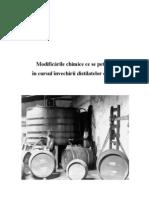 Invechirea Distilatelor de Vin