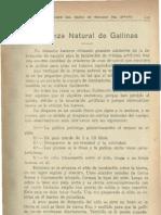 Cria Natural de Gallinas