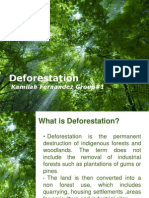 Deforestation Powerpt