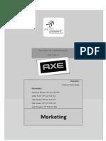 Relatório Final AXE