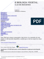 Atlas de Imagenes Curso Practico Biologia Vegetal