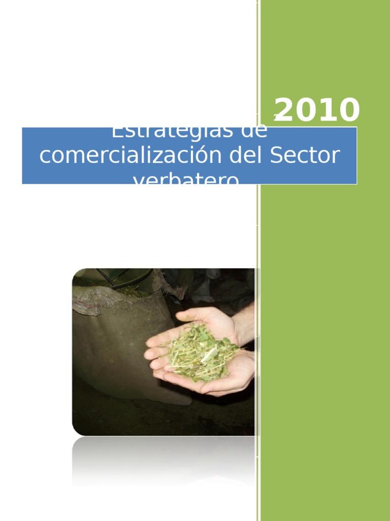 Circuito Yerbatero : Estrategias de comercialización del sector yerbatero