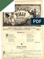 Bosanska vila [godina 5, broj 13-14; 31.7.1890]