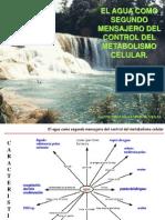 AGUA - Control Metabolismo