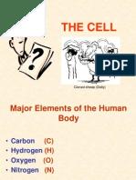Cell Dr Ravish