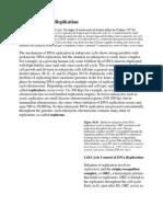 Eukaryotic DNA Replication.docx