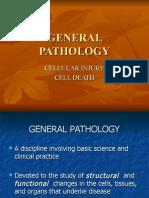 (GenPath) Cellular Injury