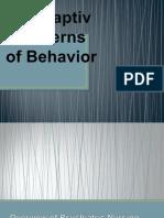 Maladaptive Patterns of Behavior