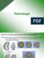 Palinologie 2