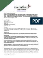Axolotl Care Sheet v 2