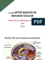 Conceptos Basicos de Biologia Celular