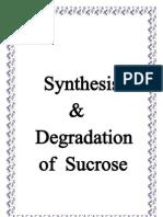 Synthesi1