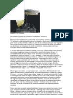 Manifesto de Cordoba