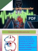 Sistema Cardiovascular MONIKA